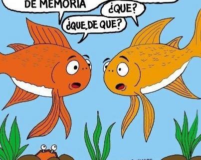 Chistes graficos Memoria-de-pez-403x320